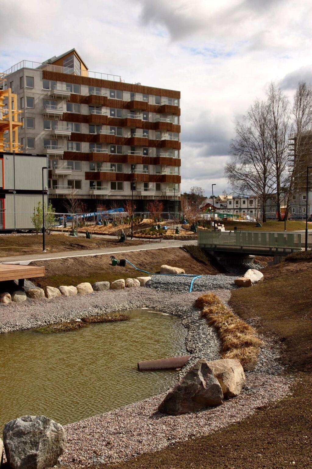 Omgivningen och dammen växer fram